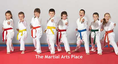 The Martial Arts Place Shop Now Link