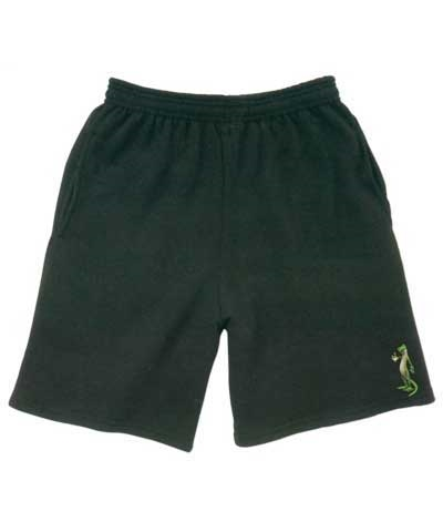 Gecko Boys Shorts FREE SHIPPING
