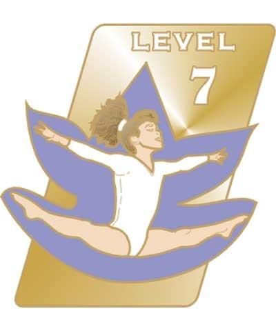 USAG Level 7 Pin