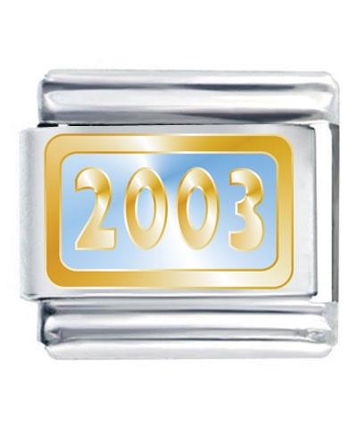 Flex Link - Year 2003