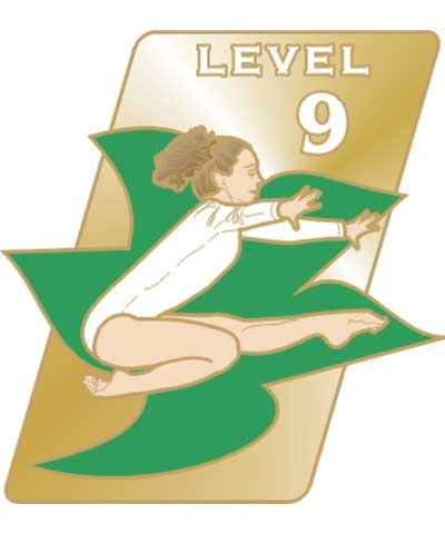 USAG Level 9 Pin