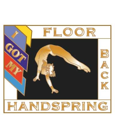 I Got My Back Handspring Floor Pin