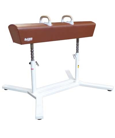 Competition Pommel Horse
