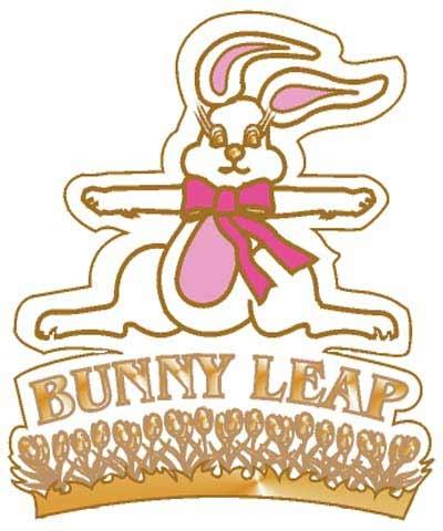 Bunny Leap Pin
