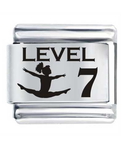 Flex Link - Level 7