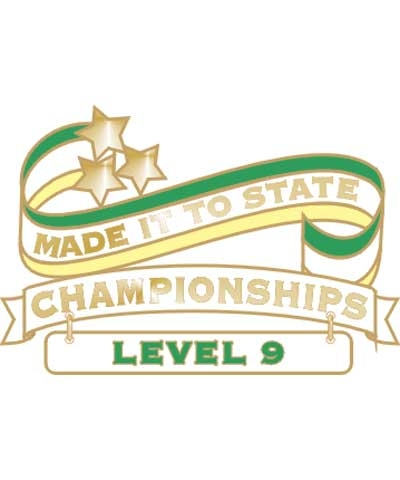 Level 9 Made It To State Pin