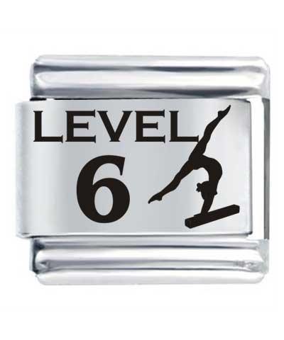 Flex Link - Level 6