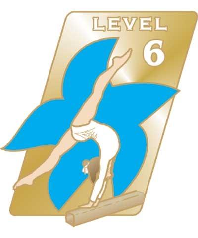 USAG Level 6 Pin