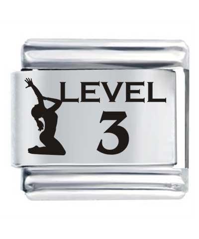 Flex Link - Level 3