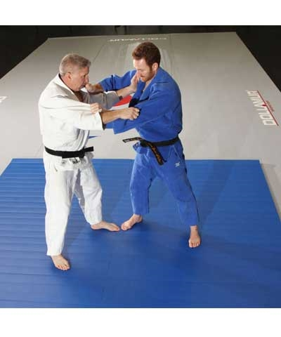 Home Tatami Flexi Roll Martial Arts Mat 10'x10'