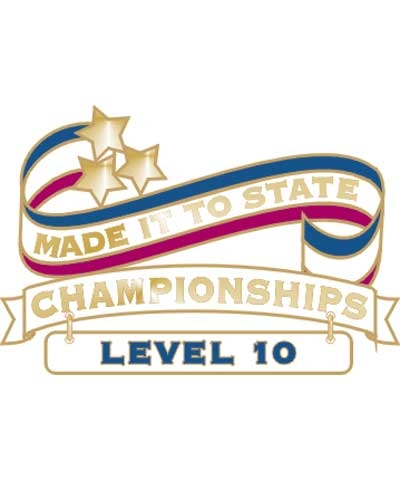 Level 10 Made It To State Pin