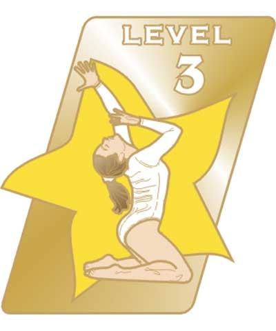 USAG Level 3 Pin